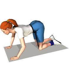 افضل التمارين لرشاقه الجسم